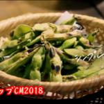 麦とホップのCM2018!嵐・ニノと篠原涼子が着てる衣装のブランドは?2