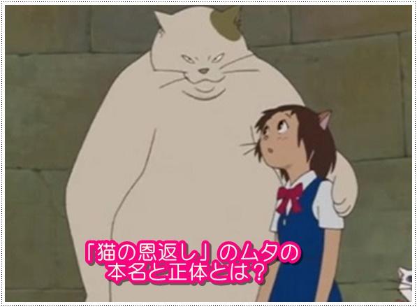 猫の恩返しのムタの本名と正体は?耳をすませばにモデルがいた?2