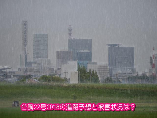 台風22号2018!台風のたまごの進路予想と被害状況は?日本に直撃?1
