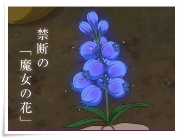 メアリと魔女の花の魔力がある花の名前は?モデルとなる花を考察!2