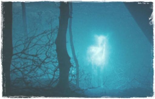 ハリーポッター[死の秘宝]スネイプとリリーの関係は?牝鹿の守護霊も4