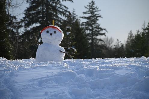 [SnowMan]ラウールはどこのハーフ?年齢や身長などのプロフィールも4