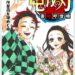 鬼滅の刃の23巻の漫画を無料で読む方法は?電子書籍と紙どちらが得?1